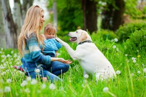 Spring Activities For Kids & Their Pets - IKEA UAE